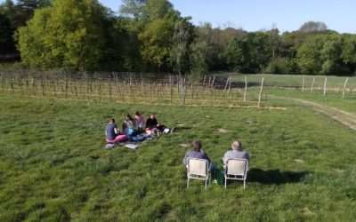 Monatsrückblick April – Social Distancing & virtuelle Kindergeburtstage